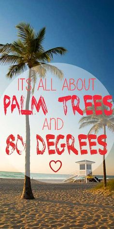 its all about palm trees and 80 degrees