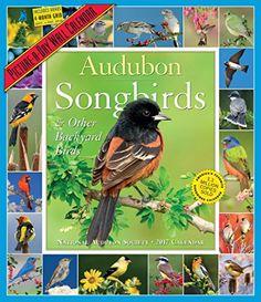 Audubon Songbirds & Other Backyard Birds Picture-A-Day Wa... https://www.amazon.com/dp/0761190082/ref=cm_sw_r_pi_dp_x_V.39xbWK8N93K