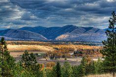 I want to go back to Montana.