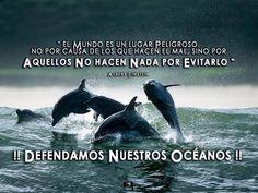 ÚneteAlPlaneta (@UneteAlPlaneta) | Twitter