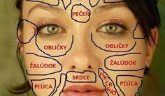 Koža je najväčším ľudským orgánom. Problémy spokožkou naznačujú rôzne zdravotné problémy. Číňania veria, že jednotlivé časti tváre sú spojené sorgánmi vo vnútri tela. Týmto spôsobom môže tvár odkrývať nerovnováhu, ktorá sa vorganizme nachádza a to hlavne prostredníctvom akné, vyrážok alebo zmenami sfarbenia pokožky. Chcete vedieť