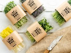 Urban Sprout Micro Green Food and Product Photography — Nick Bumgardner Photography Salad Packaging, Food Packaging Design, Brand Packaging, Coffee Packaging, Bottle Packaging, Vegetable Packaging, Organic Packaging, Growing Microgreens, Greens Recipe