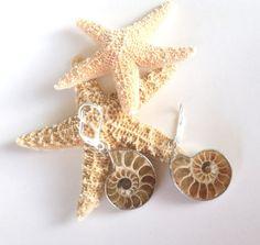 Fossil Jewelry / Petite Dangly Earrings / Pierced Ammonite Earrings / Natural Nautilus Fossil Earrings by FunkyMaMaJewelry on Etsy