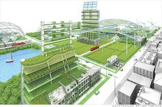 Urban agriculture is what the world needs right now.