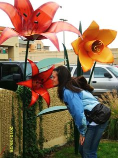 Art Prize 2010 - Iron Flowers