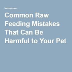 Common Raw Feeding Mistakes That Can Be Harmful to Your Pet
