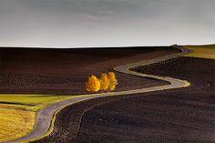 Autumn field by Martin Sprušanský on 500px
