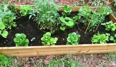Easy instructions for a raised garden bed. simple.