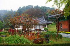 Gangneung, South Korea... 15th Century Charm at Ojukheon