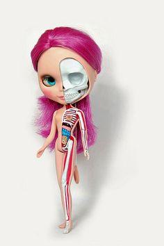 Blythe Doll Anatomy