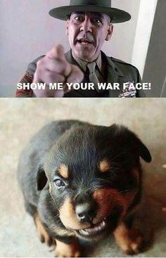 Show me your war face grrrrrr.....