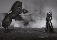 Fighting for power by Jaume de Laiguana (Horse Magazine) Horse Girl Photography, Dark Photography, Animal Photography, Editorial Photography, All The Pretty Horses, Beautiful Horses, Horse Love, Dark Horse, Horse Magazine
