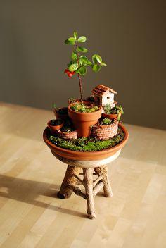 Monte de macetas con cabaña del jardinero.  #pots #garden #succulents #cotoneaster  No Linde - Incremental Mini-Gardens http://nolinde.com