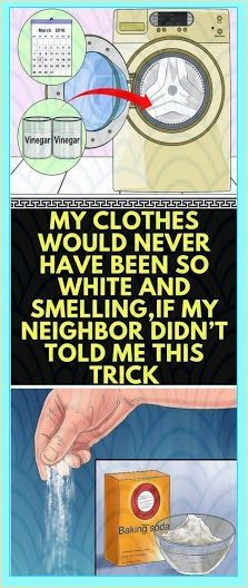 My Clothes Would Never Have Been So White And Smelling, If My Neighbor Didn�t Told me This Trick Natural Life, Natural Herbs, Natural Living, Natural Healing, Natural Facial, Herbal Remedies, Home Remedies, Natural Remedies, Cough Remedies