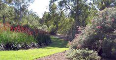 The Australian Flower Garden in the Brisbane Botanic Gardens
