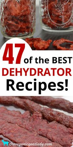 Are you looking for the food dehydrator recipes? This is the ultimate list of dehydrated food recipes and resources! Whether you are a beginner or experienced at dehydrating, this list is for you! Konservierung Von Lebensmitteln, Canning Food Preservation, Preserving Food, Preserving Zucchini, Homemade Jerky, Homemade Detox, Homemade Food, Dehydrated Vegetables, Dehydrated Food Recipes