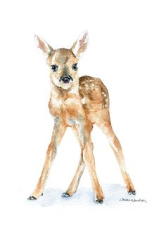 Deer Fawn watercolor giclée reproduction. (Original has been sold.) Portrait/vertical orientation. Printed on fine art paper using archival pigment inks. This quality printing allows over 100 years of