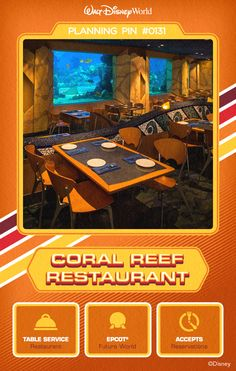 Walt Disney World Planning Pins: Watch over 4,000 sea creatures—including sharks, turtles, rays and fish—swim in the living coral reef while you dine.