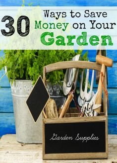 1000 images about gardening tips and pics on pinterest gardening tips how to grow and gardening - Practical tips to make money from gardening ...