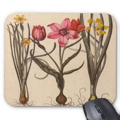 Vintage Flower Mousepad A delightful trio composed of a little yellow narcissus, a pink tulip fully opened, a pink tulip bud and y...