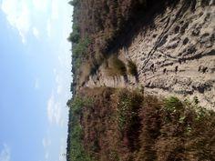 Bikkelpaadje #hardlopen