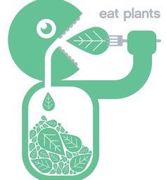 Eat Eat