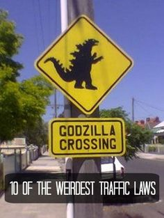 Ahhh GODZILLA! You won't believe these laws ever exist #lol #spon