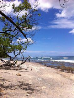Playa Avellanas. Costa Rica.