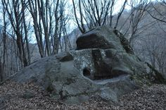 vk.com/dolmens Snow, Plants, Outdoor, Outdoors, Plant, Outdoor Games, The Great Outdoors, Eyes, Planets