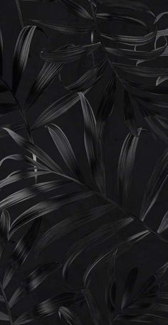 black wallpaper iphone Screen Savers Black Wallpaper Backgrounds 50 Ideas For 2019 Screen Savers Black Wallpaper Backgrounds 50 Ideas For 2019 Black Background Wallpaper, Black Phone Wallpaper, Homescreen Wallpaper, Dark Wallpaper, Trendy Wallpaper, Cute Wallpapers, Black Backgrounds, Wallpaper Backgrounds, Wallpaper Lockscreen