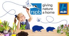 A wildlife-friendly garden kit for my son's school inc a 2m x 1m planter with pond, shrubs, plants & wildlife-friendly seeds from the Aldi/RSPB competition.