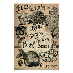 Vintage Garden Annual, Farm Flower Seeds, 1894.