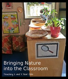 Teaching 2 and 3 Year Olds: Bringing Nature into the Classroom