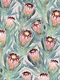 Protea Floral Fabric - Pale Painted Protea Neriifolia - Small Version By Micklyn - Protea Floral Cotton Fabric By The Metre by Spoonflower Pretty Patterns, Flower Patterns, Protea Flower, Protea Art, Textile Prints, Art Prints, Textiles, Floral Fabric, Surface Pattern