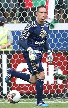 Fernando Prass - Palmeiras 1x0 Santos - Allianz Parque - Campeonato Paulista (Final) 26/04/2015