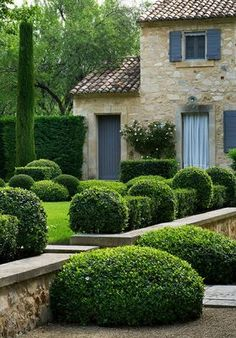 capped stone wall with clipped buxus.