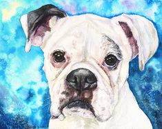White Boxer watercolor print of the Original Painting art cute Sweet Dog Decor Cute Paintings, Animal Paintings, Original Paintings, White Boxer Dogs, White Boxers, Canvas Art, Canvas Prints, Watercolor Print, Dog Art