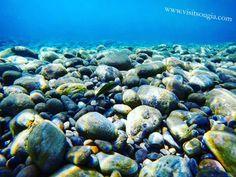 Snorkeling in Sougia! The beauty of Libyan sea!  Website: www.visitsougia.com 🐳🐟🐳🐟🐙🦑🐙🐳🐳🐋🐋 #greek #crete #creteisland #chania #crète #cretelife #greekpride #hraklion #paleochora #lifeofadventure #greece #greekislands #greeceislands #greeklife #creteisland #sougia #elafonisi #palaiochora #chorasfakion #ilovegreece #bestvacations #travelawesome  #snorkeling #beach #diving #island #underwater #sea #travel ⛵⛵⛵⛵⛵⛵⛵⛵⛵⛵⛵ Follow @visitsougia😉 Photo instagram @stefanosougia👈👌