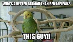 Ben Affleck as Batman meme