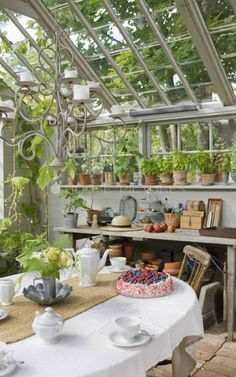 beautiful greenhouses interior - Google Search