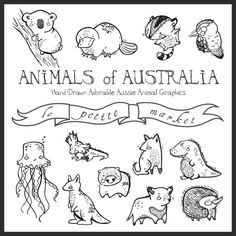 Cute Hand Illustrated Australian Animals Digital Clipart Graphics, Aussie Creatures Wombat Platypus Dingo Jellyfish Koala Echidna Kangaroo