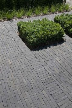 I love looking skinny tiles. Landscape Elements, Landscape Materials, Yard Stones, Front Yard Patio, Small Front Gardens, Paving Design, Garden Floor, Paved Patio, Dry Garden