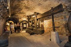 Winemuseum, Esterházy Palace (Schloss Esterházy, Eisenstadt History Of Wine, Museum, Medieval, Places, Image, Roads, Wine, Museums, Lugares