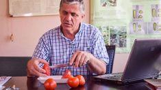 Obținerea semințelor de roșii este o muncă ce necesită multă migală, precum și o serie de pași bine stabiliți. Este o muncă manuală în cea mai mare parte, chiar și când este vorba despre cantități mari și mai ales de soiuri valoroase, așa cum este cazul tomatelor de la Stațiunea de Cercetare și Dezvoltare pentru […] Mai, Button Down Shirt, Men Casual, Gardening, Mens Tops, Agriculture, Plant, Dress Shirt, Garten