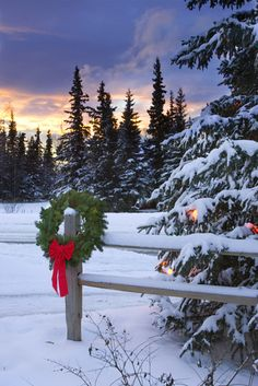 1220869.  Holiday Wreath hanging on split-rail fence next to decorated tree w/sunset Anchorage Alaska Winter