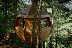 Egg-Shaped Tree House is Secretly Nestled in Canada's Woods - My Modern Metropolis