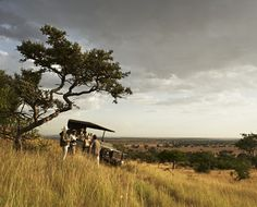 African Safari! <3