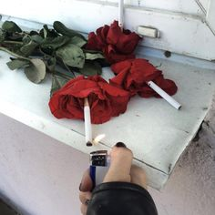 giving cigarettes to the last of Yuji's roses so they die faster