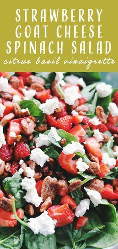 This strawberry goat cheese salad is loaded with fresh baby spinach and sweet candied nuts. It\'s dressed in a bright citrus vinaigrette that\'s flecked with fresh basil. It\'s the perfect easy summer salad that is sure to please.