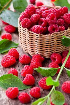 Raspberries by M. Pessaris - Photo 157212913 / 500px